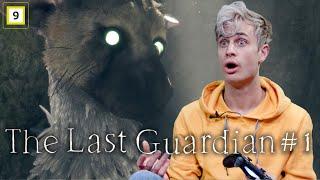 HVA er DET?! EP 1 The Last Guardian