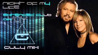 BARBRA STREISAND feat. BARRY GIBB - Night Of My Life - Extended Club Mix (gulymix)