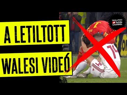 A LETILTOTT WALESI VIDEÓ - TrollFoci S2E36 thumbnail