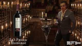 Дегустация Вина VALDELANA Tinto Joven DOC Rioja(, 2013-02-21T13:59:16.000Z)