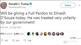 Trump announces pardon for Dinesh D'Souza