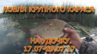 ЛОВЛЯ КРУПНОГО КАРАСЯ НА УДОЧКУ.17.07-19.07.17.