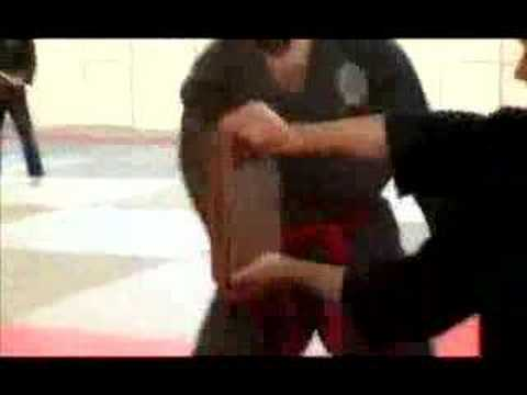 Tay Son Vo Dao demonstration: breaking