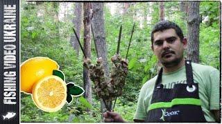 Сочный и безумно вкусный шашлык в лимонном маринаде. HD(, 2015-07-28T07:40:24.000Z)