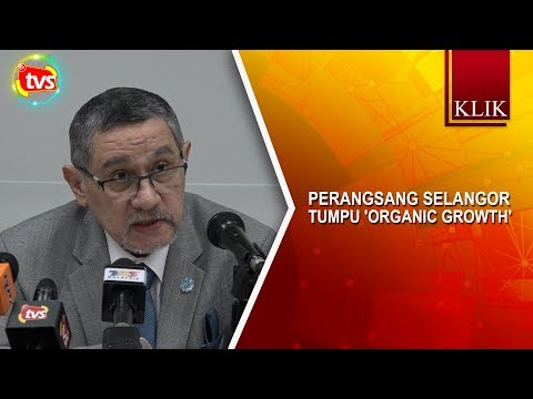 Perangsang Selangor tumpu 'organic growth'