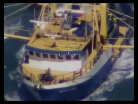 maritime heron eo1