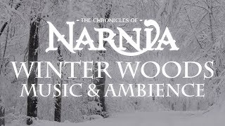 Chronicles of Narnia | Winter Woods Music & Ambience  Relaxing Music with Sounds of Winter