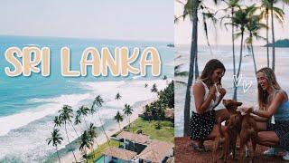 eine der schönsten Wochen *Sri Lanka vlog* //Hannah
