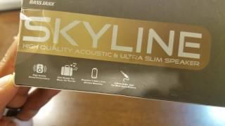 SKYLINE SPEAKER REVIEW