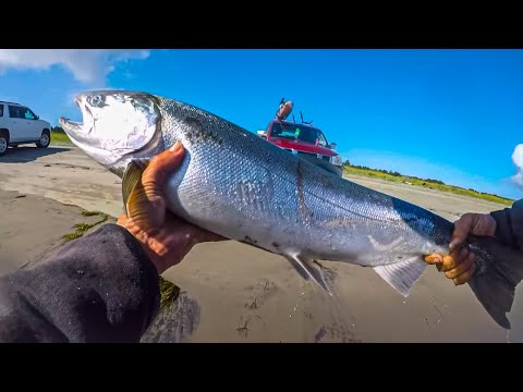 Columbia River Salmon Fishing {BANK FISHING} MULTIPLE  Coho & Chinook Salmon On Spinners