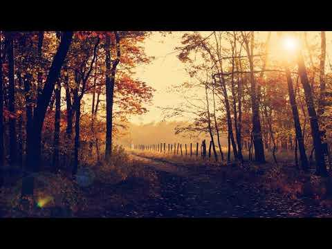 London Bridge ♫ ♪ Guitar - Relaxing, Lullaby Music by Bregman Music