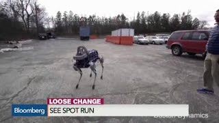 Watch Robot Dog 'Spot' Run