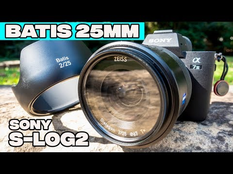 25mm F2 Batis Zeiss Lens Review Sony a7III Cinematic Test in Bright Daylight