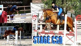 Stage CSO 25 février - Cavalier PRO