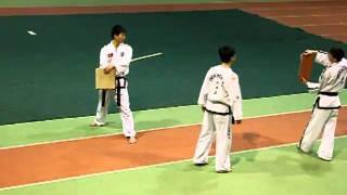 выступление Мастеров Таэквон-до из Северной Кореи 17