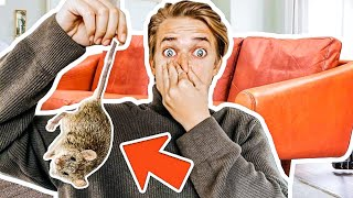 You'll NEVER believe what we FoUND in our Couch!! *Embarrassing!