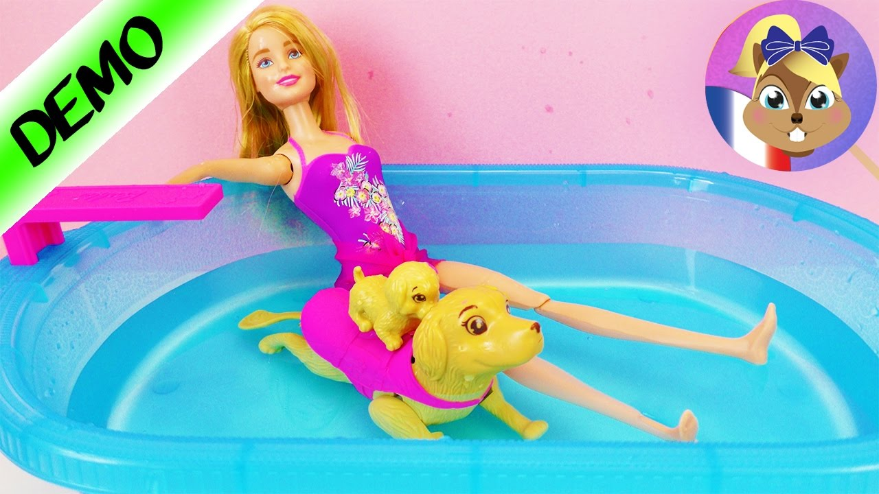 Barbie chien qui nage dans la piscine le chiot apprend for Barbie chien piscine