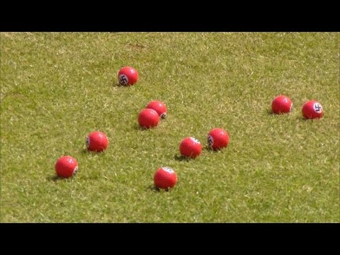 Donald Trump Protester Hands Out Red Swastika Golf Balls at Course Opening