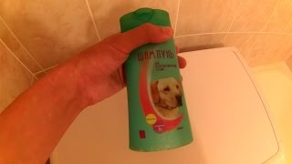 Как часто нужно мыть собаку шампунем