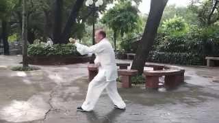 Xing Yi Quan Five-element Fist 形意拳五行拳 - 陰陽五行拳學社 Yin - Yang Five Elements Fist Society HK