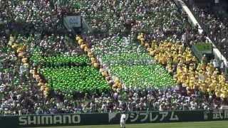 松山東高校 1回表アルプス応援ノーカット 2015センバツ高校野球 vs 東海大四高 甲子園