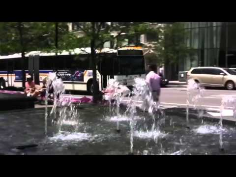 Westchester Bee Line Bus White Plains NY 2010