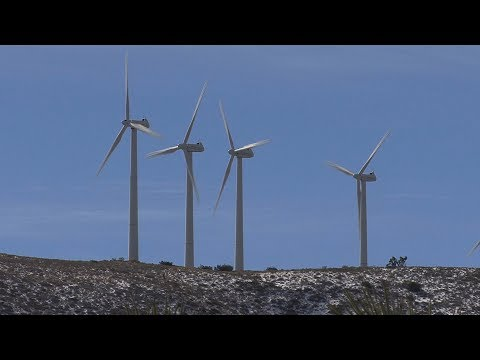 Climate Change: Mobilizing the World (Excerpt)