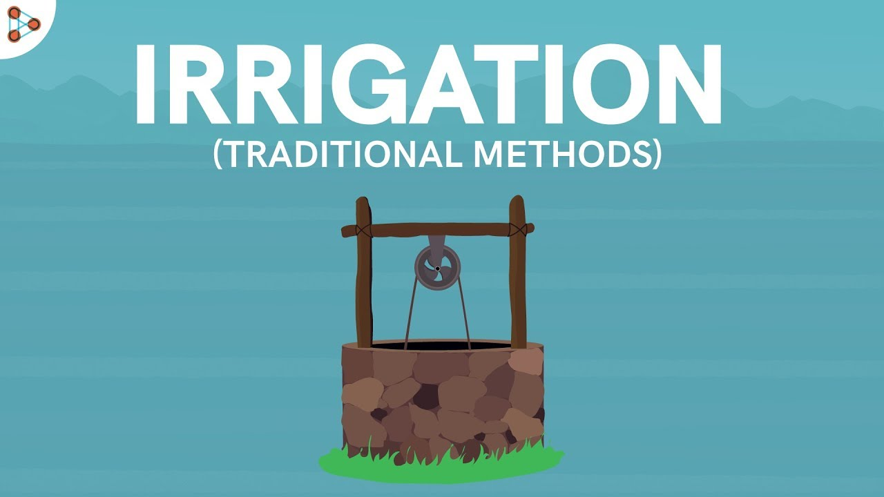 Traditional Methods Of Irrigation Cbse 8 Youtube