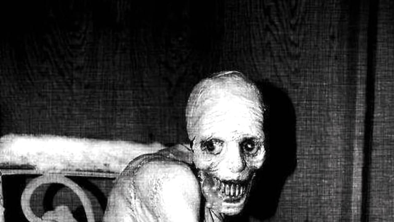 russian scientists did horrifying sleep experiment and kept