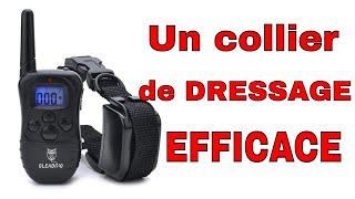 😺 Un collier de dressage pour chien EFFICACE !
