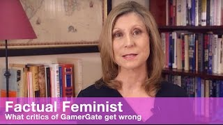 What critics of GamerGate get wrong