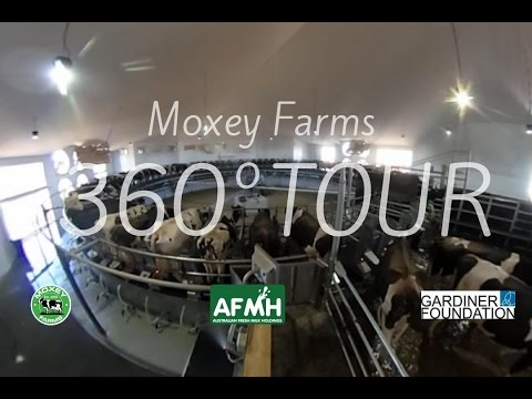 Moxey Farms 360° Video Tour - Australia's Largest Single Site Dairy farming operation
