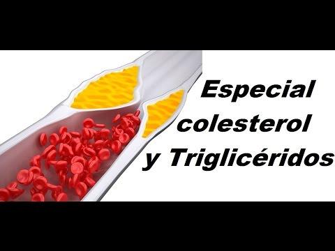 Especial colesterol y triglicéridos