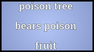 Poison tree bears poison fruit Meaning