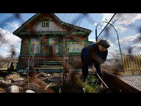 Цены на дачи падают: россияне избавляются от загородных домов // Деловые новости и новости бизнеса