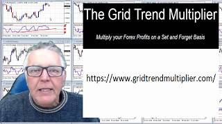 Using the Grid Trend Multiplier EA to win Forex Competitions. Is this the Best Forex EA for the job?