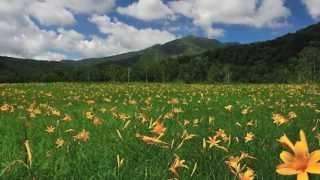 夏の思い出 うた: ペギー葉山 作詞:江間章子 作曲:中田喜直 1949年(...