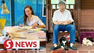 Selangor Ruler, Tengku Permaisuri direct people to be compassionate to strays