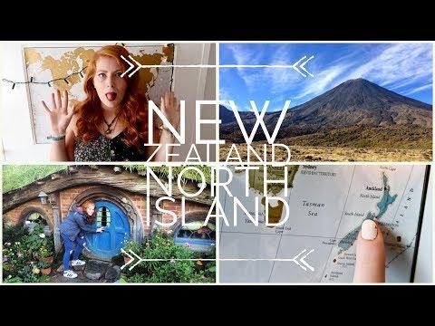 NEW ZEALAND NORTH ISLAND TRAVEL ADVENTURE || STRAY