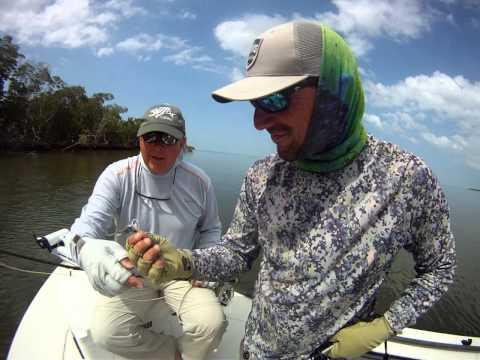 Fly Fishing Snook Ten Thousand Islands, Macro Island, FL