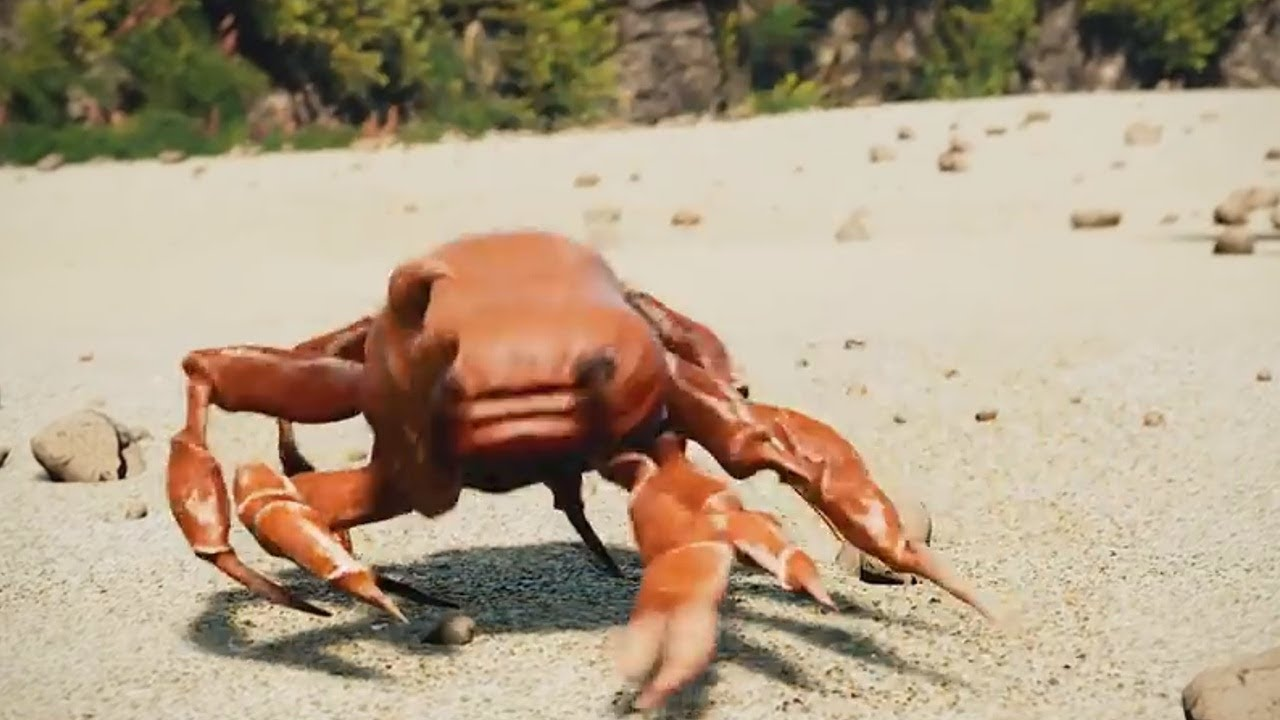 obama is gone crabs