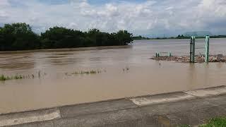 180708 愛知県一宮市から見た増水した木曽川