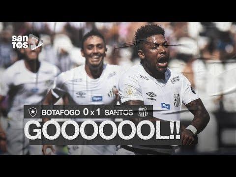 BOTAFOGO 0 X 1 SANTOS | GOL | BRASILEIRÃO (21/07/19)