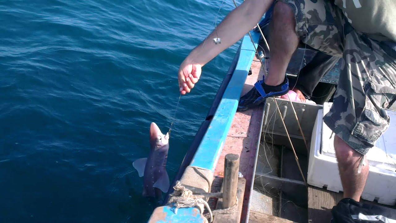 Рыбалка в батуми с берега
