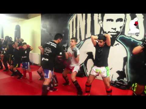 Universal Gym training