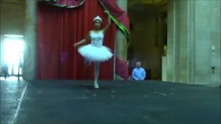 Ballet Dance Solo - Zhang Li Dance Academy