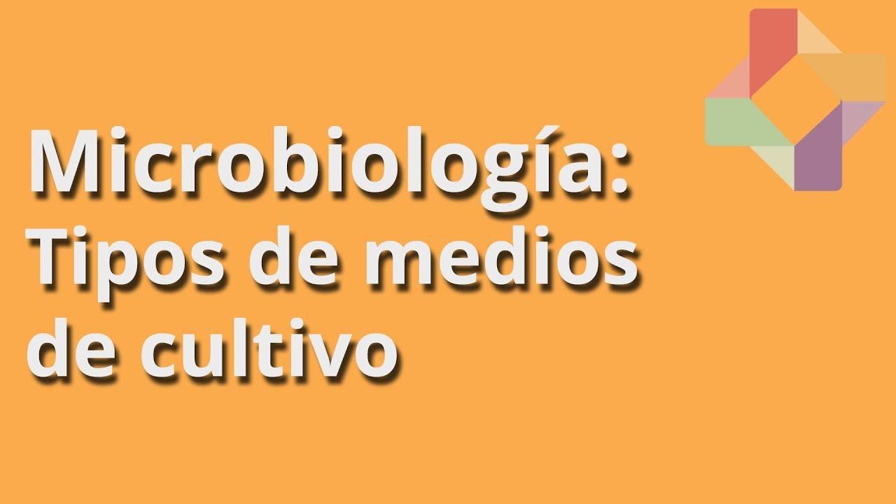 Tipos de medios de cultivo microbiolog a educatina for Tipos de estanques para acuicultura