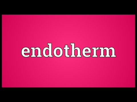 Endotherm Meaning