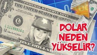 Dolar Neden Yükselir?