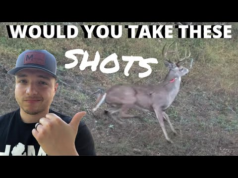 DEER HUNTING Kill Shots Compilation - Deer Shot Placement // Where To Aim On A Deer With A Bow